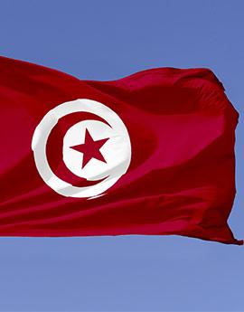 tunesien flagge drucken fahne tunesien drucken. Black Bedroom Furniture Sets. Home Design Ideas